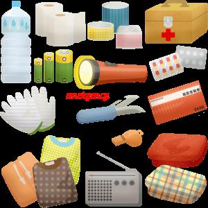 An example emergency preparedness kit