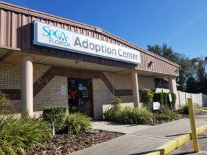 SPCA Florida Adoption Center