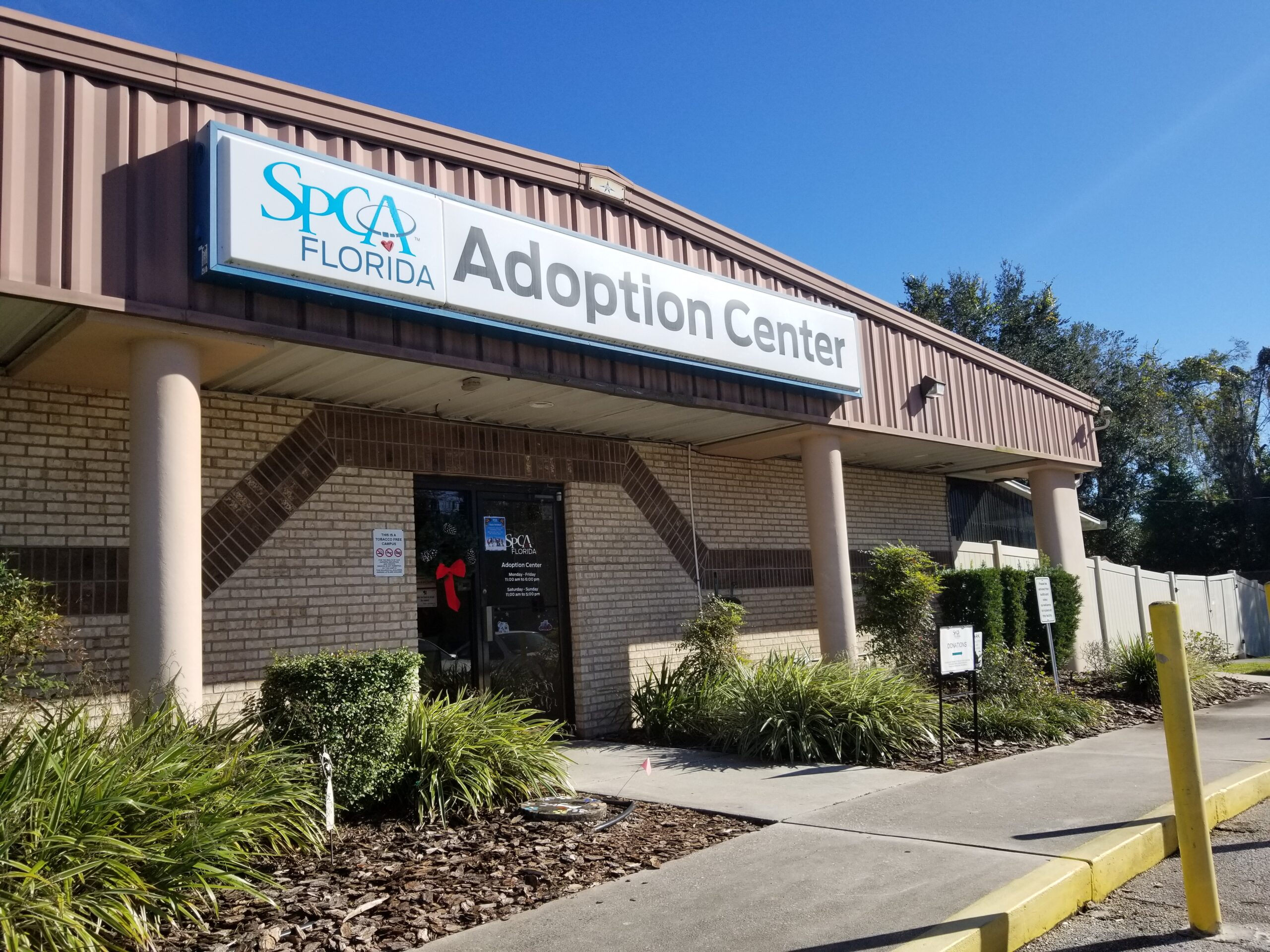Bringing Some Holiday Cheer to The Pets of SPCA Florida