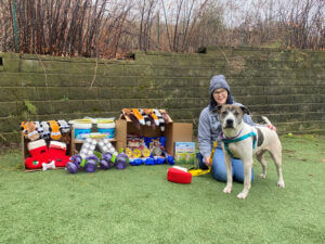 Woman kneeling on the ground with a grey and white dog standing in front of her. Pet supplies are displayed on the left.
