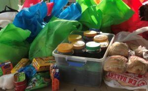 Sample of perishable and non-perishable food donations