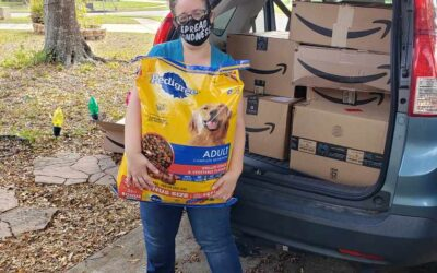 Pawsome Support: Providing Donations for Pets and their Owners