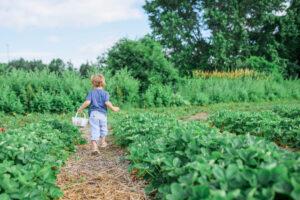 child with basket in garden