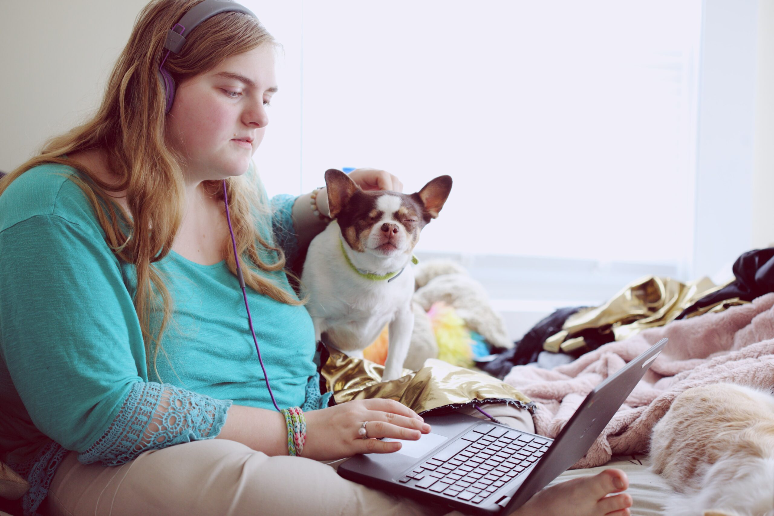 A person wearing headphones sits on a bed. One hand is petting a small dog, while the other rests on a laptop that the person is looking at.